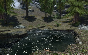Picture grass, trees, lake, stones, grass, trees, lake, skyrim, Skyrim, stones, tes 5