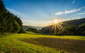 Picture field, forest, the sky, the sun, rays, valley