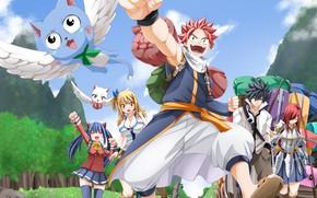 Picture anime, Lucy, dragon, Gray, Carla, manga, Happy, Wendy, japanese, Fairy Tail, Natsu, Charles, Erza, dragon …