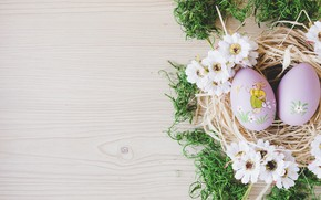 Picture flowers, moss, eggs, Easter, Holiday