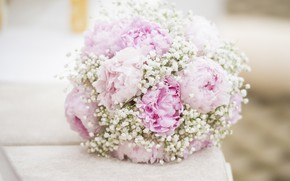 Picture Flowers, bouquet, Peonies