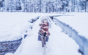 Picture winter, snow, toy, doll