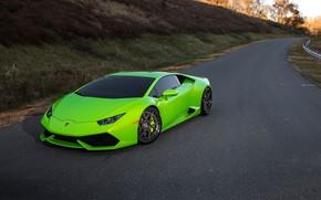 Picture Lamborghini, Series, Track, Huracan, LP610-4, Spec, ADV7