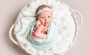 Picture smile, girl, fur, cocoon, basket, baby