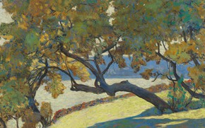 Picture landscape, nature, picture, Alexander Altman, A large tree on the edge of the sea