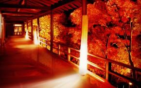 Picture autumn, house, porch