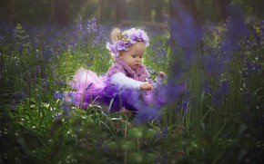 Picture girl, girl, grass, nature, butterfly, flowers, child, baby, wreath, orchids, tetera