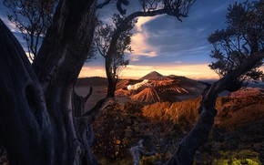 Picture clouds, trees, the volcano, Indonesia, Mount Bromo