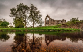 Picture trees, nature, lake, England, ruins, Yorkshire, Abbey Bolton