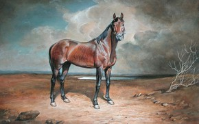 Picture horse, branch, Aibek Begalin, Two thousand five, Tungsten