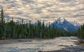 Picture landscape, mountains, nature, beauty