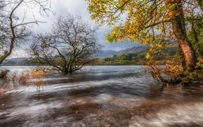 Picture autumn, trees, mountains, lake, England, Cumbria