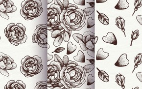Picture background, roses, texture, petals, patterns, flowers, roses