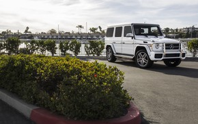 Picture Mercedes, AMG, White, G63
