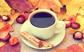 Wallpaper Cup, leaves, coffee, fall, autumn, leaves, cup of coffee, acorns, book, autumn
