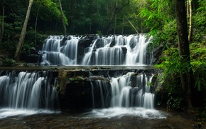 Picture greens, forest, trees, tropics, stream, stones, waterfall, Thailand, cascade, Sam lan waterfall