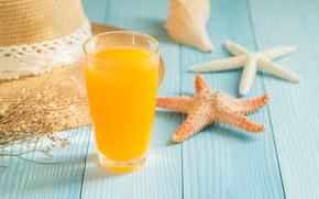Picture hat, starfish, hat, summer, starfish, summer, orange juice, orange juice