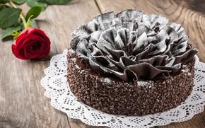 Wallpaper rose, chocolate, cake, dessert, powdered sugar, decoration rose, chocolate cakes