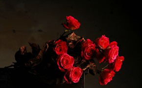 Picture flowers, the dark background, bouquet, Roses