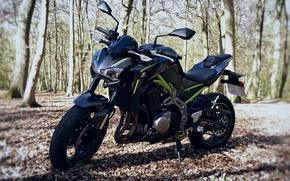 Picture motorcycle, Kawasaki, moto, Kawa, Z900
