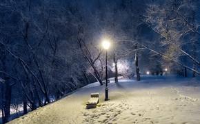 Wallpaper winter, the evening, lantern, Park, trees