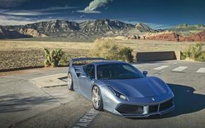 Picture Ferrari, GTB, SEMA, 488
