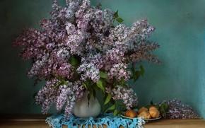 Picture bouquet, lilac, profiteroles