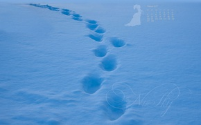 Picture snow, traces, the way, blue, trail, calendar, February, 2017