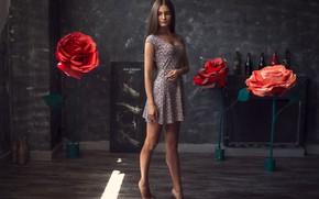 Picture model, dress, brunette, Olya, Alex Zakharov