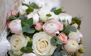 Picture bouquet, the bride, wedding, bouquet, wedding, bride