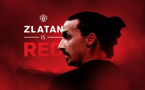 Picture Red, Sweden, Football, Manchester United, Devils, Player, Ibrahimovic, Zlatan