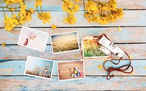Wallpaper flowers, photo, eggs, spring, camera, colorful, Easter, wood, flowers, camera, spring, Easter, eggs, decoration, tender