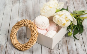 Wallpaper buds, valentine`s day, wood, peonies, white, romantic, peonies, marshmallows, flowers