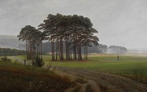 Picture road, trees, landscape, picture, Caspar David Friedrich, Noon