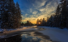 Picture winter, forest, snow, trees, dawn, river, Sweden, polynya, Arvika