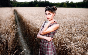 Picture field, trail, dress, the beauty