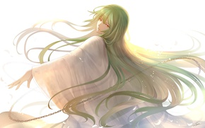Picture look, anime, art, Fate Stay Night, character, green hair, fate/grand order