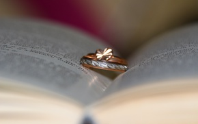 Picture ring, book, decoration