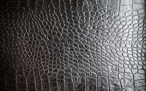 Picture Black, Leather, Texture