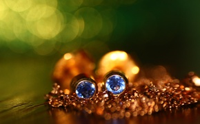 Picture macro, background, gold, earrings