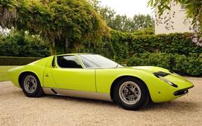 Picture Color, Auto, Lamborghini, Retro, Green, Machine, Car, Supercar, 1970, Miura, Supercar, Lamborghini Miura, Italian, Body, …