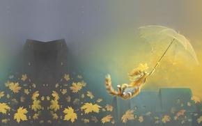 Picture autumn, leaves, umbrella, mood, the wind, cat, art, flight