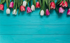 Picture flowers, bouquet, colorful, tulips, pink, white, white, fresh, wood, pink, flowers, beautiful, tulips, spring, purple, …