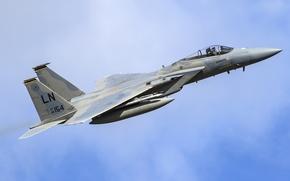 Picture Eagle, McDonnell Douglas, F-15C