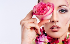 Picture flower, girl, rose