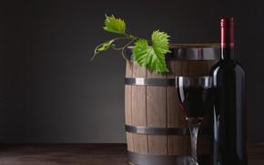 Picture leaves, wine, glass, bottle, barrel
