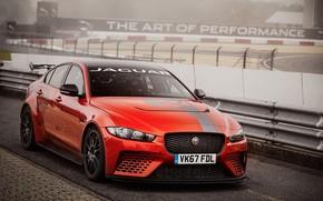 Wallpaper asphalt, the fence, Jaguar, orange, XE SV Project 8