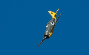 Wallpaper the sky, flight, Thunderbolt, P-47