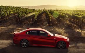Wallpaper Alfa Romeo, Four-leaf clover, red car, Giulia, 2017