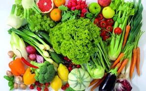 Wallpaper carrots, bow, grapes, apples, eggplant, grapefruit, cabbage, salad, celery, vegetables, mushrooms, cuts, tomatoes